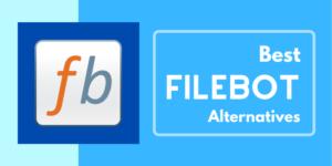 FileBot License Key